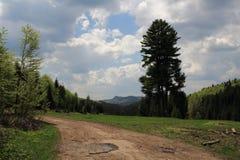 Slovak Paradise National park, Slovakia. Slovak Paradise National park in Slovakia stock photo