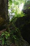 Slovak Paradise. In Slovak Paradise National Park stock images