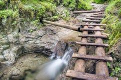Slovak paradise, Sucha Biela Stock Photo