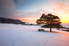 Slovak winter landscape. Royalty Free Stock Photo