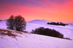 Slovak winter landscape. Stock Image