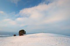 Slovak winter landscape. Stock Photos