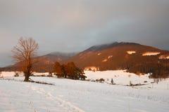 Slovak winter landscape. Royalty Free Stock Image
