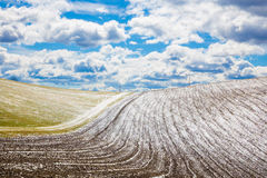 Slovakia - The field in spring country of Silicka Planina plateau Stock Images