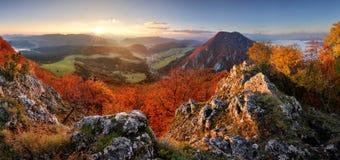 Slovakia forest autumn panorana landscape with mountain at sunri Stock Photos