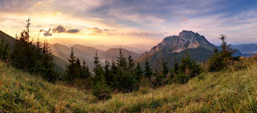 Slovakia mountain peak Rozsutec Stock Photography