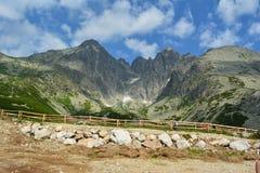Slovakia mountains. Slovakia mountain plants and stones Stock Images