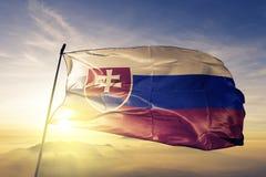 Slovakia national flag textile cloth fabric waving on the top stock illustration