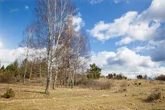 Slovakia - Spring landscape of Silicka planina in Slovensky Kras Stock Photos