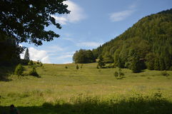 slovakia tatras Royaltyfri Fotografi