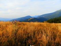 Slovakian горы Tatra Стоковая Фотография