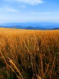 Slovakian горы Tatra Стоковое Изображение RF