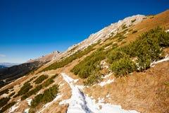 Slovakian Belianske Tatry mountains landscape. Beautiful slovakian Belianske Tatry mountains. Beautiful sunny panorama - dolina zadnych medodolov royalty free stock photo