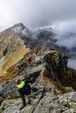 slovakian carpathian berg solig kulleblast i sommar Fotografering för Bildbyråer