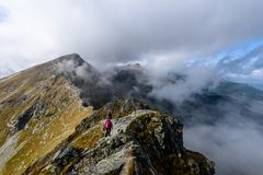 slovakian carpathian berg solig kulleblast i sommar Royaltyfri Foto