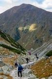 slovakian carpathian berg solig kulleblast i sommar Arkivfoto