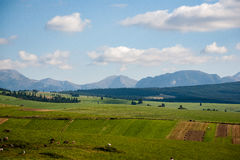 Slovakian carpathian mountains in autumn Stock Photos