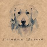 Slovakian Chuvach. Slovak cuvac dog breed with long fur digital art. Watercolor portrait close up of domesticated animal. Sticking out tongue, hand drawn doggy vector illustration
