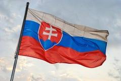 slovakian flagga Arkivbild