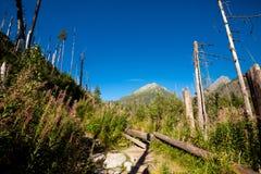Slovakian Spiski lakes Tatry mountains Royalty Free Stock Photography