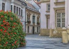 Slovakien Bratislava - November 5th, 2017 historisk gammal stad, byggnader från austro-ungrare välde Royaltyfria Foton