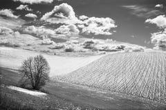 Slovakien - fältet i vårland av Silicka Planina Royaltyfria Bilder