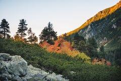 Slovakien högt Tatras berglandskap i morgonen royaltyfri foto