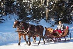 SLOVAKIEN STRBSKE PLESO - JANUARI 06, 2015: Hästslädevagn i Strbske Pleso Arkivbilder