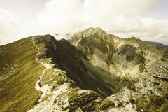 Slovakiska carpathian berg i höst - tappningfilmblick Arkivfoton