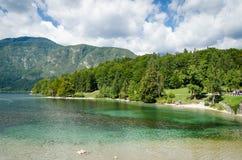 Slovenië, Meer Bohinj Stock Foto