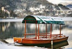 Slovenië, meer dat in de winter wordt afgetapt stock fotografie