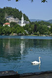 Slovenia, Bled Stock Photography