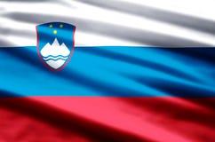 Slovenia flag illustration vector illustration