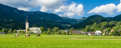 Slovenia, typical landscape in Gorenjska Stock Photography