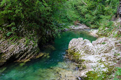 Slovenia, Vintgar Gorge Royalty Free Stock Images