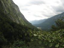 Slovenia - vogel mountain. Landscape near the vogel mountain Stock Photos