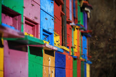 Slovenian Colored Beehives Royalty Free Stock Photo