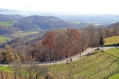 Slovenian countryside nearly city Maribor Stock Photo