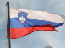 Slovenian flag Royalty Free Stock Photos