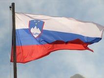 Slovenian flag Royalty Free Stock Photos