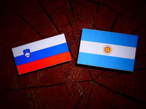 Slovenian flag with Argentinian flag on a tree stump. Slovenian flag with Argentinian flag on a tree stump Stock Images