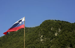 Slovenian flag Stock Image