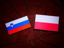 Slovenian flag with Polish flag on a tree stump isolated. Slovenian flag with Polish flag on a tree stump vector illustration