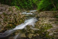 Slovenian mountain stream Royalty Free Stock Photography