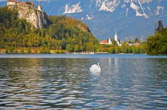 Slovenian mounts, Bled lake Royalty Free Stock Images