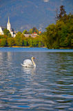 Slovenian mounts, Bled lake Stock Photo