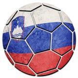 Slovenien för medborgare för fotbollboll flagga Slovenien fotbollboll Royaltyfri Fotografi