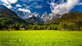 Sloveno Julian Alps e la montagnadel pik di Å (punta) Immagine Stock Libera da Diritti