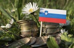 Slovensk flagga med bunten av pengarmynt med gräs Arkivfoton