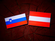 Slovensk flagga med den österrikiska flaggan på en trädstubbe Royaltyfri Foto